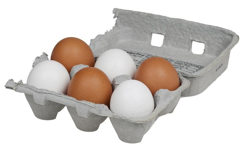 Uova fresche in stoccaggio